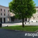 nopalla-albero1[1]